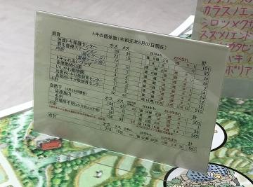 190527f1