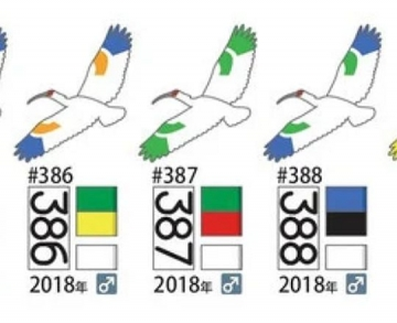 191118c25